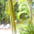 riviera_green_16.jpg